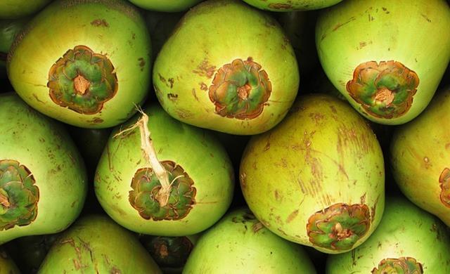 coconuts-331261_640.jpg