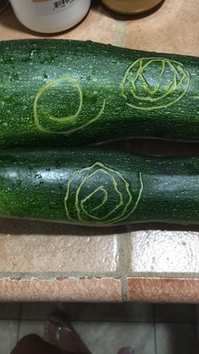 Any idea what this is from on my zucchini?
