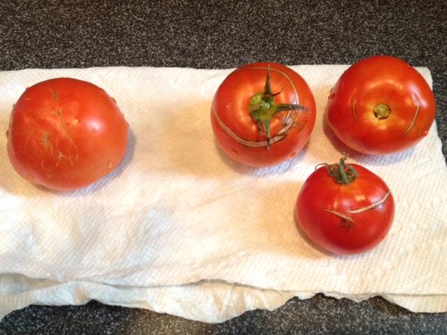 October 2016 tomatos