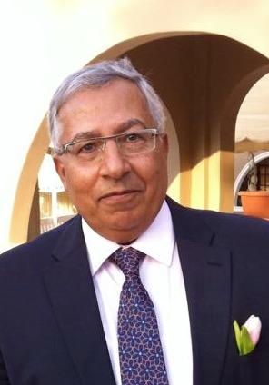 Professor Dr. Mohamed El Meleigi