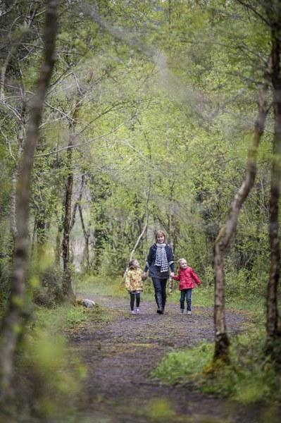 On dry land there are over 3kms of woodland trails to explore...