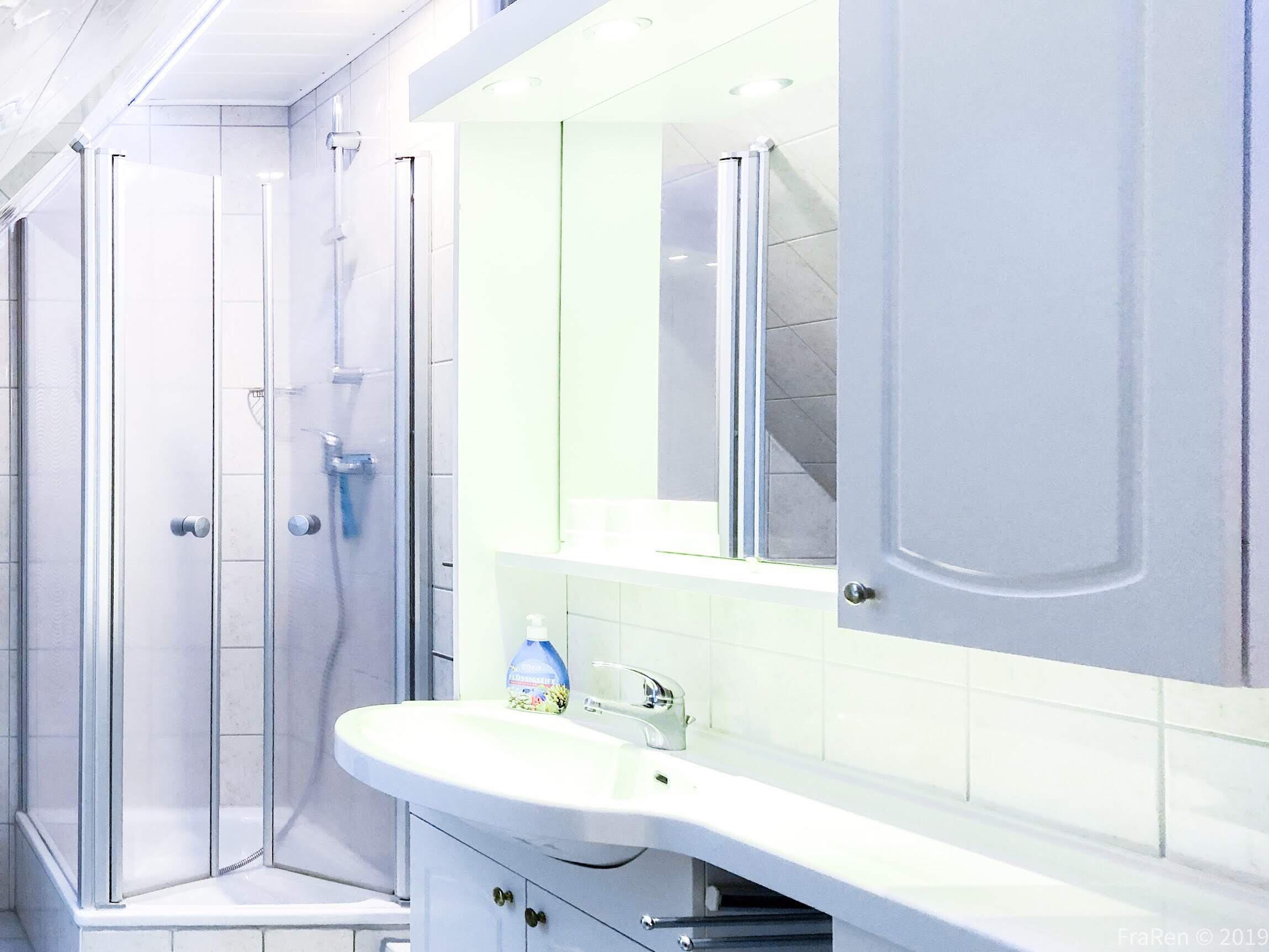 1. Dusche / WC  - Das große Duschzimmer mit Dusche/WC und LED-Effekt Licht