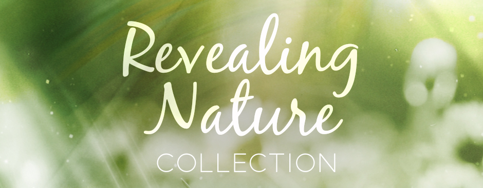 Revealing Nature