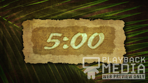 Ancient Palm 1 Church Countdown