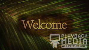 Ancient Palm Welcome 2 Motion Background