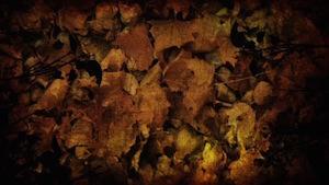 Burlap Leaves Blank Motion Background