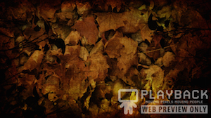 Burlap Leaves Blank 1 Still Background