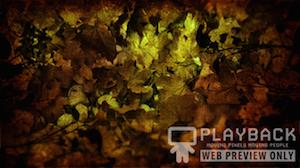 Burlap Leaves Blank 2 Still Background Image