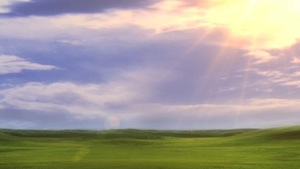 Fields of Green Motion Background