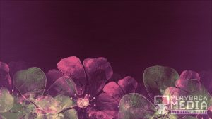 Floating_Flowers_Motion_3_prod