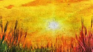 Golden Sun Blank Motion Background