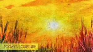 Golden Sun Scripture Motion Background