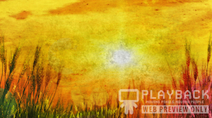 Golden Sun Blank Still Background
