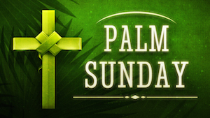 Holy Palms 1 Motion Background