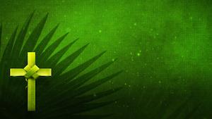 Holy Palms 2 Motion Background