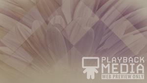 Pastel Flower 1 Motion Background