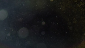 Spacey Motion Background