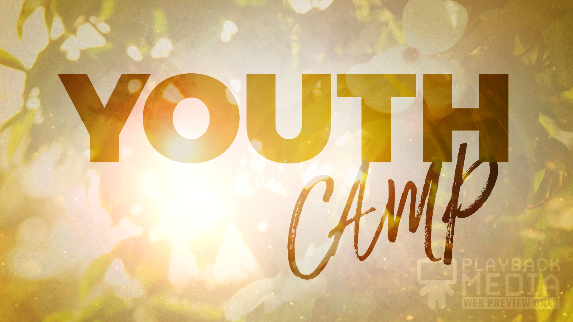 Sunny Days youth camp motion background