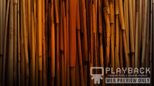 Texture Bamboo 1 Still Background