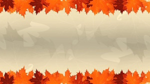 Thanksgiving Leaves Blank Motion Background