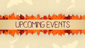 Thanksgiving Leaves Events Motion Background