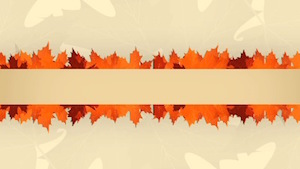 Thanksgiving Leaves Line Motion Background