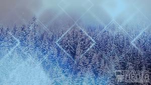 Winter Trails 2 Blue Still Background