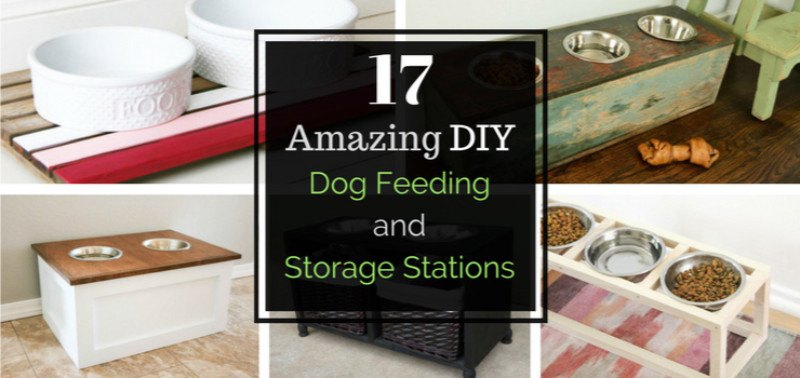 Why A Feeding Station? Well, For Starters It Stops Clumsy Dogs From  Spilling Their Dish Every 2 Minutes. And Many Of These Stations Double As  Food Storage, ...