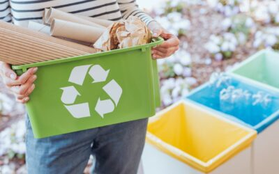 Como falar de sustentabilidade para crianças?