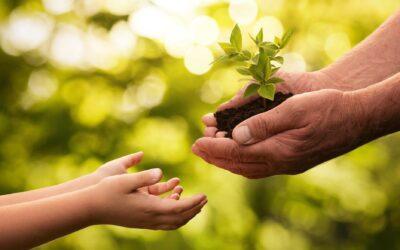 5 atitudes sustentáveis para praticar com as crianças
