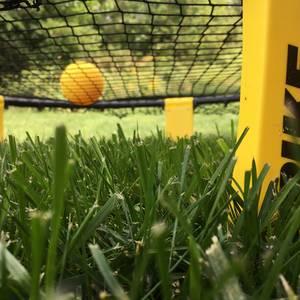 Omaha Spikeball Beginner League