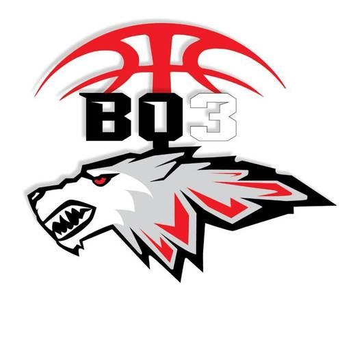 BQ3 Elite Wolfpack Spring/Summer Teams