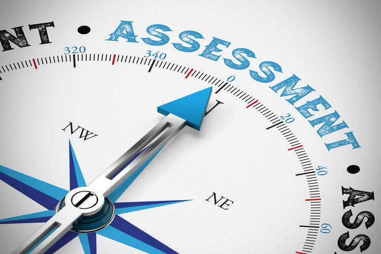 Online! Assessment in the PYP