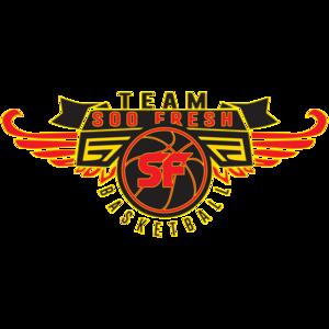 AAU/Travel Team Club Fee