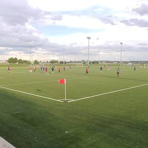Session 4 '20 - DSGP Monday Night Soccer Recreational Coed 11v11