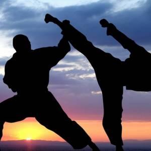Martial Arts 2