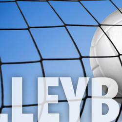 NEF Women's Volleyball League