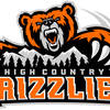 Thumb grizzlies mainlogo