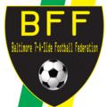 Small bff logo