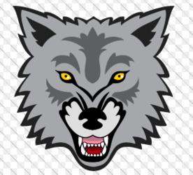 Lansing Wolves