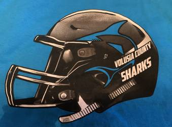 Volusia County Sharks