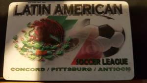Latin american soccer league