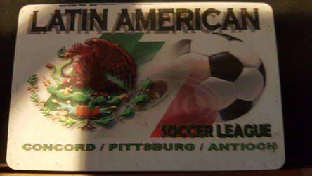 Latin american soccer league
