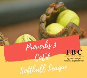 Proverbs 3 CoEd Softball Leaque