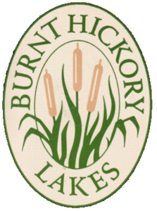 BHL Cornhole League