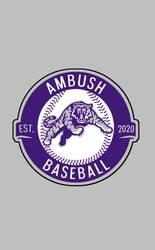 AMBUSH 7U Baseball Tryouts