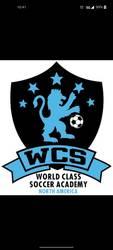 World Class Soccer Academy