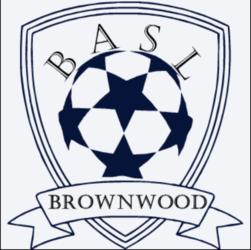 Brownwood Adult Soccer League