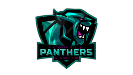 Victoria Falls Panthers Basketball Club