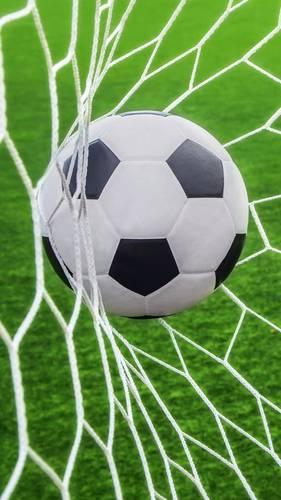 Quincy soccer league